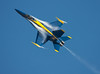 Angel in the sky (San Diego Shooter) Tags: show blue wallpaper angel sandiego air flight airshow blueangels desktopwallpaper airshows blueangel miramarairshow miramarairshowsandiego showair angelssan diegoair 2009san thepinnaclehof miramarairshow2009 tphofweek14 diegomiramar showmiramar showsblue sandiegodesktopwallpaper