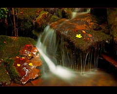 Waterfall in the forest (Botond Horvth) Tags: world travel autumn color tourism nature water stone ro forest river season de landscape la photo waterfall leaf spain agua nikon october long exposure spirit earth weekend bosque nikkor cascade rioja monasterio espritu d90 botond horvth valvanera 1685mm