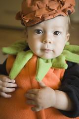 Fall - Infant