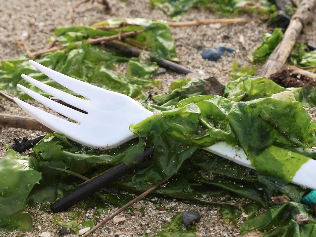 Plastic Fork Litter on Beach