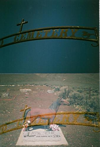 horse lover's cemetery