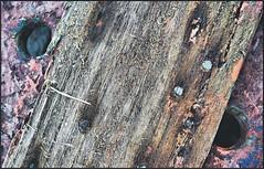 Caixn (INMAR) Tags: wood color colour texture textura madera caja colores textures caixa material texturas tablas pintura tabla clavos clavo deteriorado inmar caixn