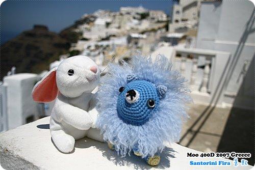 藍與白合照-1