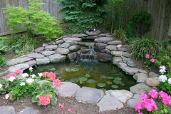 Water Features and Ponds | Masonry Division | Johnsons Landscaping 21 (Johnsons Landscaping Service, Inc) Tags: park lighting county water stone stairs work silver landscape outdoors design dc washington spring md nw exterior northwest gardening landscaping masonry johnson scenic fences plan maryland chevy chase potomac service walkways features montgomery walls kensington takoma decks bethesda ponds silverspring stonewalls takomapark driveways carpentry rockville retaining drainage paver chevychase olney arbors patios plantings trellises retainingwalls exteriorlighting landscapelighting segmental johnsonslandscapingservice incresidentialandcommerciallandscapedesignservicesinwashington montgomerycountyotherservicesgardendesign yarddesigns stepsandwalkways timberwallspatiosstepsandwalkwayspondsgardendesignstonewallsexteriorlightingpruningandtrimmingpaversflagstonewalkwayflagstonepatiodrainageretainingwallsyarddesignslandscapingservicejohnsonlandscapinglandscapedesign