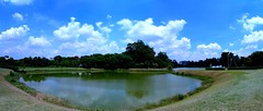 Lago do Ibirapuera (o menor) (Antonio Carlos Castejn) Tags: parque autostitch brasil sopaulo jpeg panormica parquedoibirapuera sonydscr1 sonyvcldeh08r