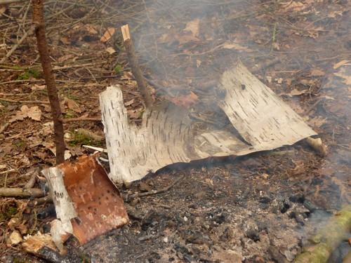 birch-bark-tinder
