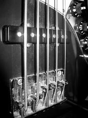 serious bass (frankieleon) Tags: blackandwhite bw music macro interestingness interesting bestof play cc musical creativecommons string strings popular bassguitar frankieleon