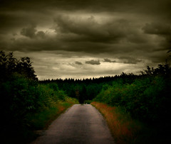 546 Dark Forest (Nebojsa Mladjenovic) Tags: street light summer sky sunlight mist france color tree art nature clouds digital rural forest dark french landscape outdoors lumix frankreich san europe burgundy magic dream panasonic ciel frankrijk nuages paysage rue bourgogne campagne francia arbre priroda morvan ete francais darkforest fz50 drvo yonne svetlost oblaci snovi abigfave platinumheartaward mladjenovic mygearandmepremium mygearandmebronze mygearandmesilver mygearandmegold mygearandmeplatinum mygearandmediamond