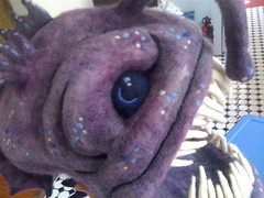 Angler Fish Process 138