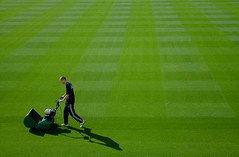 Grass. (Ian McWilliams.) Tags: shadow green grass proud cut newcastleunited stjamespark lawnmower pitch care trim nufc cuttings turf geordie keepoffthegrass grasscutter groundsman