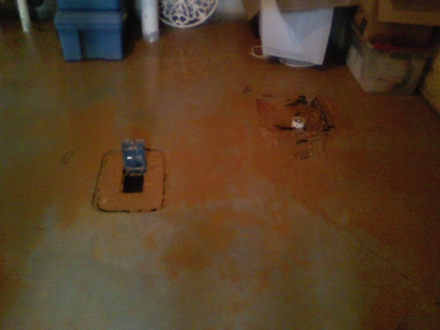 water coming up into basement