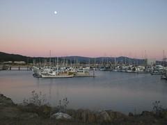 Half Moon Bay harbor at dusk