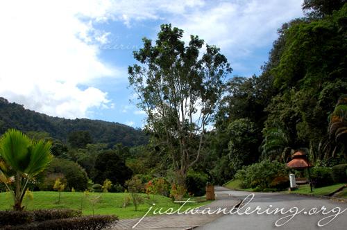 Penang Botanic Gardens 02