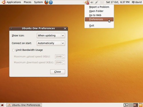 Ubuntus Ubuntu One cloud storage running.