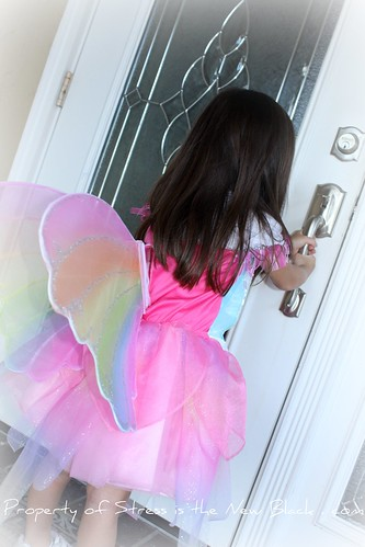 Katie fairy