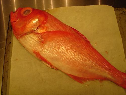 金目鯛(1.2kg)