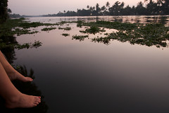 IMG_5262 (willemaster) Tags: india kerala backwaters alleppey
