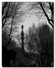 Cristobal Colon (PAUROPA) Tags: barcelona catalunya estatua cristobalcolon duotono blackwhitephotos