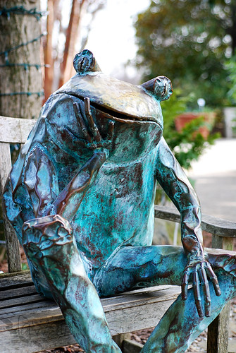 ABG_frog_on_bench[2009]