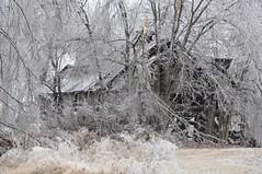 Icy Barn (Porch Dog) Tags: old storm barn rural nikon kentucky january icestorm icy 2009 ruraldecay marshallcounty nikond90 marshallcokentucky