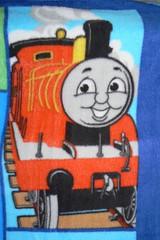 P1280011 (sandrasphotoexchange) Tags: towels kidsthemedblankets