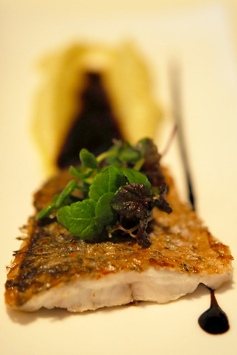 Pan fried Seabass with Celery puree - DSC_2314