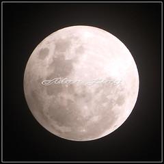 IMG_3299 (Alan&Megi) Tags: portrait moon alan canon indonesia landscape eos singapore cityscape fullmoon ef50mmf14 ling 15th 2009 lunarnewyear megi 50d efs1755 canoneos50d efs1755mmf28 alanling 10thfeb2009