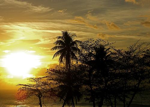 brilliant dusk