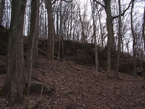 Rock Outcroppings in Percy Warner Park