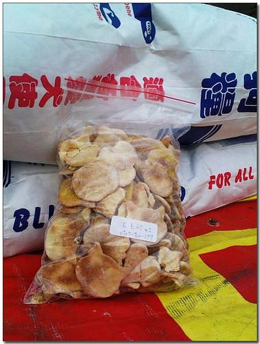 2009-04-23『需要幫助中途助養認養募糧』嘉義王阿姨狗園,收留的狗狗們,正在期待生命中的奇蹟,如有能力懇請給他們一個機會,謝謝您!