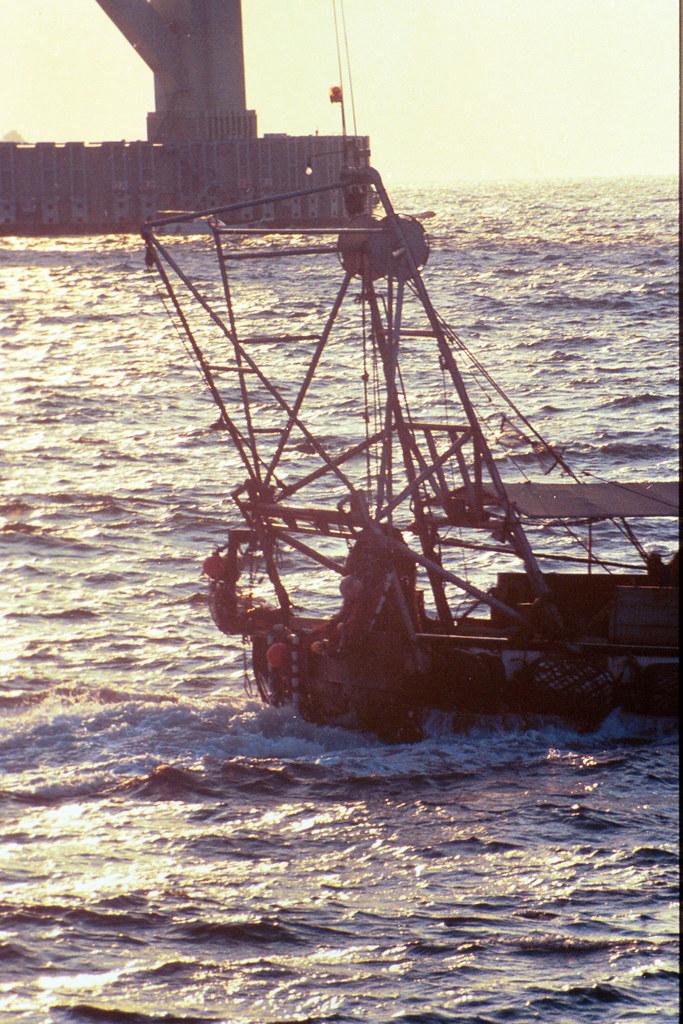 Pesquero Japonés