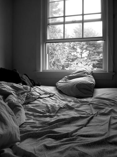 7.11.09 - morning