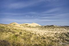Breathe in ... breathe out ... (AndreaKamal.com) Tags: sky clouds germany deutschland sand wind dunes himmel wolken windy northsea sylt nordsee landcape dnen nordfriesland
