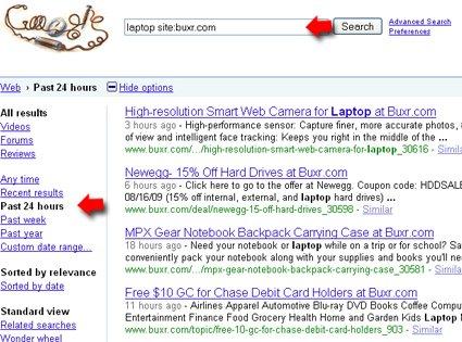 Google site search