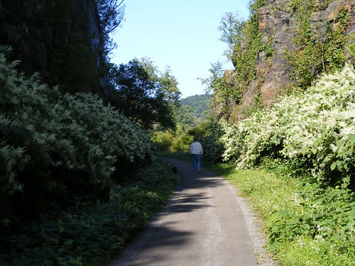 Canalway Trail