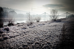 Frosty morning (David Pinzer) Tags: morning bridge winter cold ice river dresden hoarfrost meadow wiese frosty freeze fernsehturm ufer brcke eis morgen tvtower elbe banks reif blaueswunder rauhreif flus gettygermanyq3