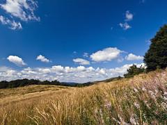 P8310210 (Janusz K.) Tags: landscape bieszczady krajobraz pejzaz