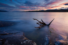 Autumn Winds (Anders Hagen-Nsset) Tags: autumn sunset lake fall beach water norway norge europe wind debris windy scandinavia finearts tyrifjorden canoneos5d andersnsset rshomstranda