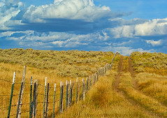 ROAD TO HEAVEN (Aspenbreeze) Tags: autumn sky grass clouds fence geotagged colorado barbedwire grasses oldroad anawesomeshot saariysqualitypictures magicunicornverybest aspenbreeze