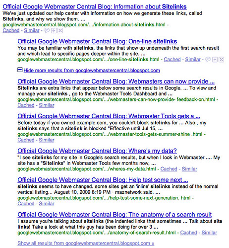 Google More Results Plus Box
