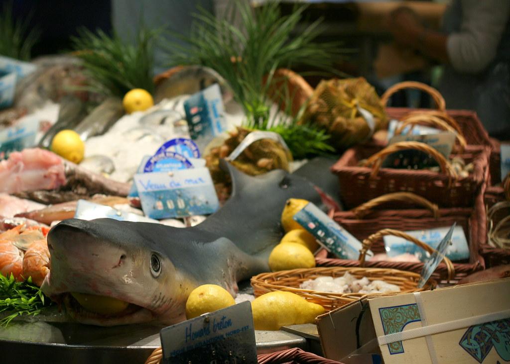 Marché aux poissons - Requin
