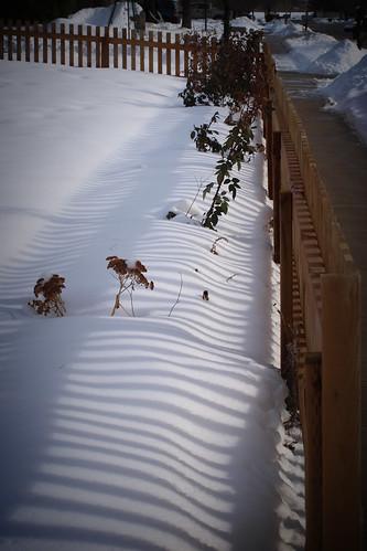 winterflowerbed