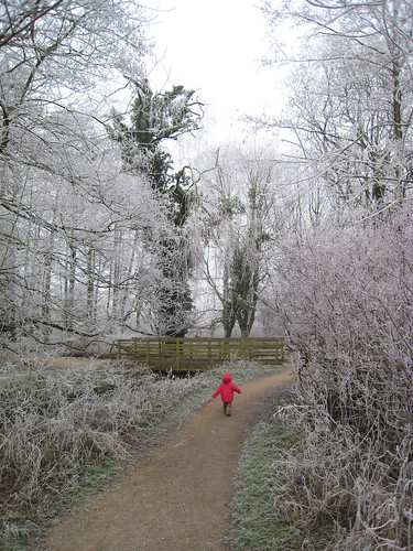 Amelia in frost