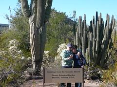 Joshua and Allison (alist) Tags: phoenix garden botanical desert alicerobison
