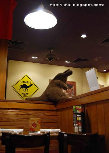 Outback tassie wings recipe
