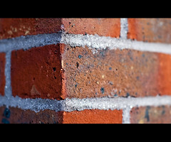 All In All It's Just Another Brick In The Wall (©Komatoes) Tags: shadow orange brown sun brick texture wall closeup photography 50mm photo nikon bokeh bricks cement picture explore devon mortar photograph exeter brickwalls shallow f18 thewall 275 shallowdepthoffield brickinthewall d40 allinallitsjustanotherbrickinthewall nikond40 closeupbrick largebrick closebrick brickcloseup