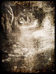 cami reial (the incredible how (intermitten.t)) Tags: old spain path walk textures espana journey layers meditation cami menorca baleares 0471 camireial 250908 geomenorca geomenorcaonlythebest