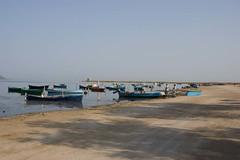 paziente lavoro (kukussunasu) Tags: sardegna stagno pescatori marcedd