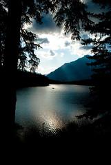 johnson lake (raspberrytart) Tags: trees lake canada water silhouette nikon alberta banffnationalpark johnsonlake d80