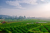 Strawberry farm (T Ξ Ξ J Ξ) Tags: indonesia bandung westjava nikkor d300 strawberryfarm ciwidey mywinners abigfave teeje anawesomeshot